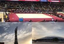 Dünya Cimnastik Şampiyonası