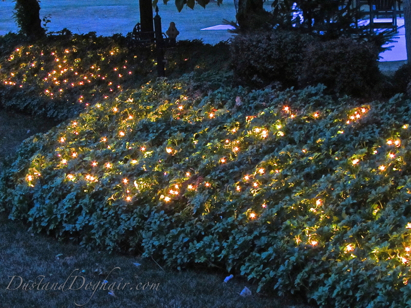 How Do I String Lights On A Christmas Tree : Garden Lighting ?Magical? Ground Cover DustandDoghair.com