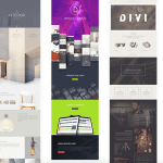 Divi Theme Screen Shot