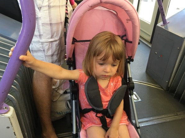 """On the way to the beach.. face says """"these people keep dragging me everywhere"""""""