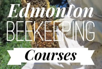 Edmonton Beekeeping Courses, John Janzen Nature Centre, Dustin Bajer