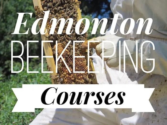 Edmonton Beekeeping Courses, Dustin Bajer