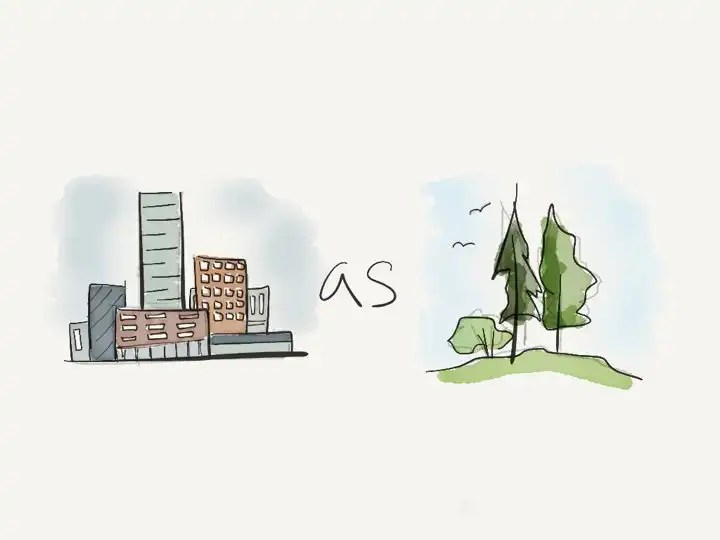 Let's create a forest city. City as forest.