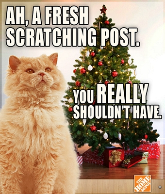 new-scratching-post-christmas-meme