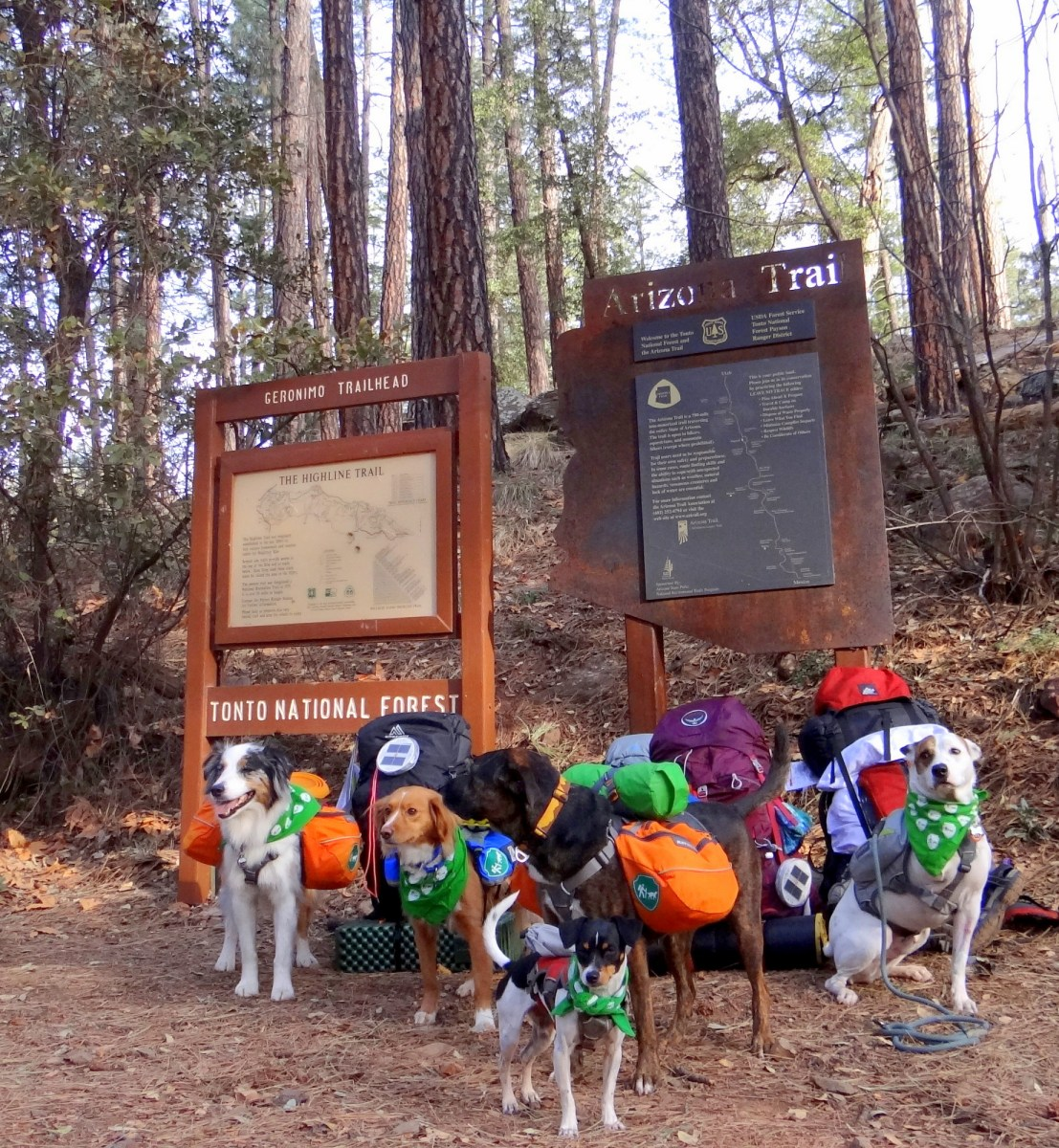 Our First Backpacking trip