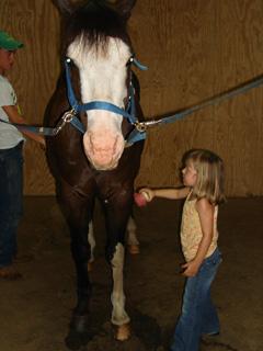 Anna - Horse Camp 2