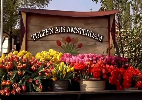 Feature Films  Dutch Angle Production Services