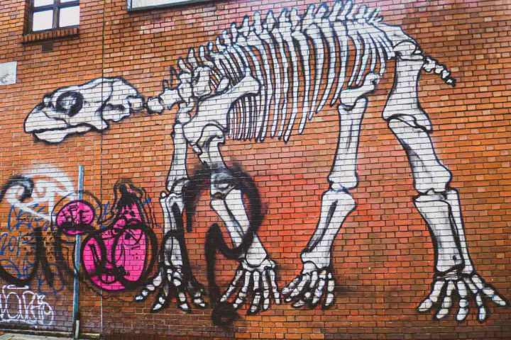 ROA street art of a dinosaur skeleton in Shoreditch