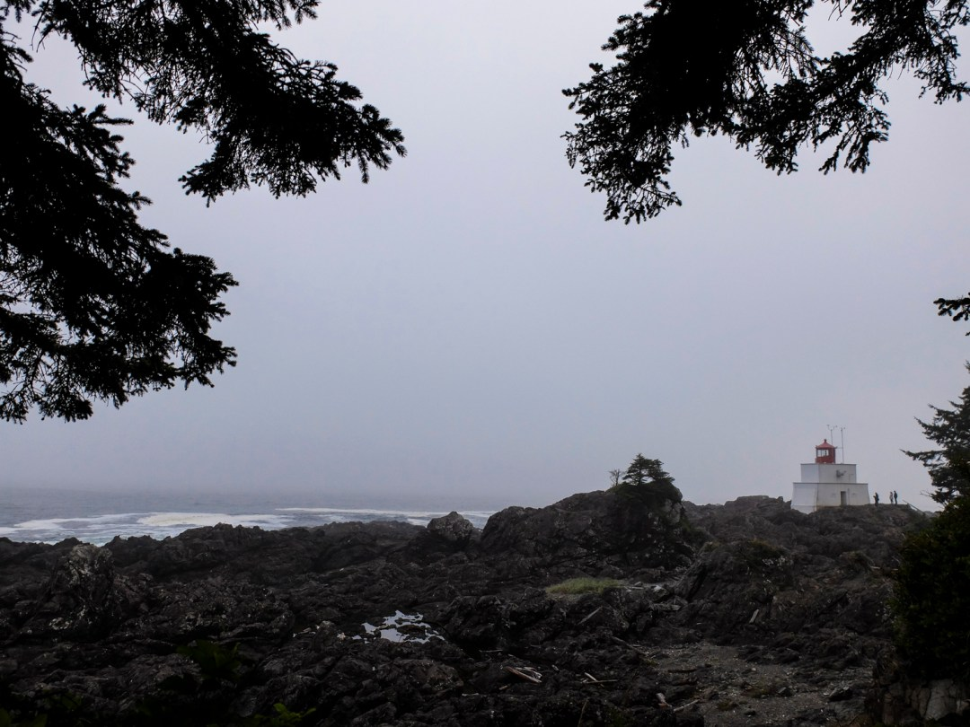 Wild Pacific Trail in Ucluelet | Dutchie Love