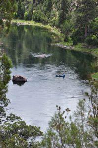 Fishing The Green