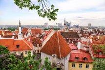 In Tallinn Estonia Love
