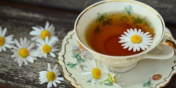 Çaya Dair Söylenen En Güzel Sözler…
