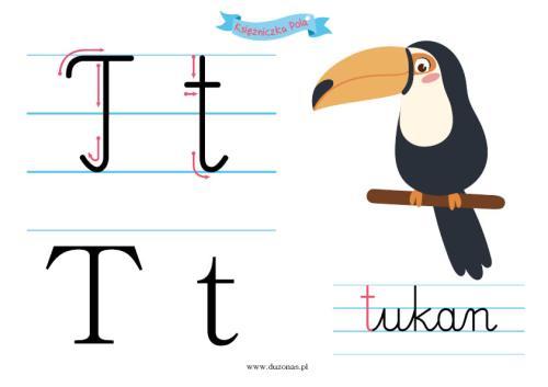 T jak tukan – karta pracy do druku