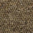 Barley-03816-(112px)