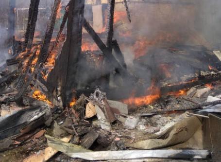 Пламя охватило Херсон с обеих сторон: в поджогах камыша подозревают браконьеров