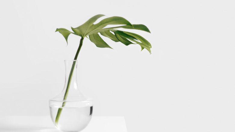 Dalších 11 ekologických maličkostí k mému zelenějšímu já