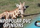 Unpopular DVC Opinions