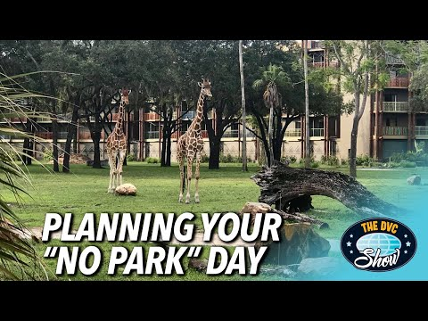 Planning Your Disney No Park Day