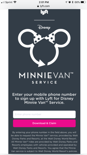 Minnie Van Invite