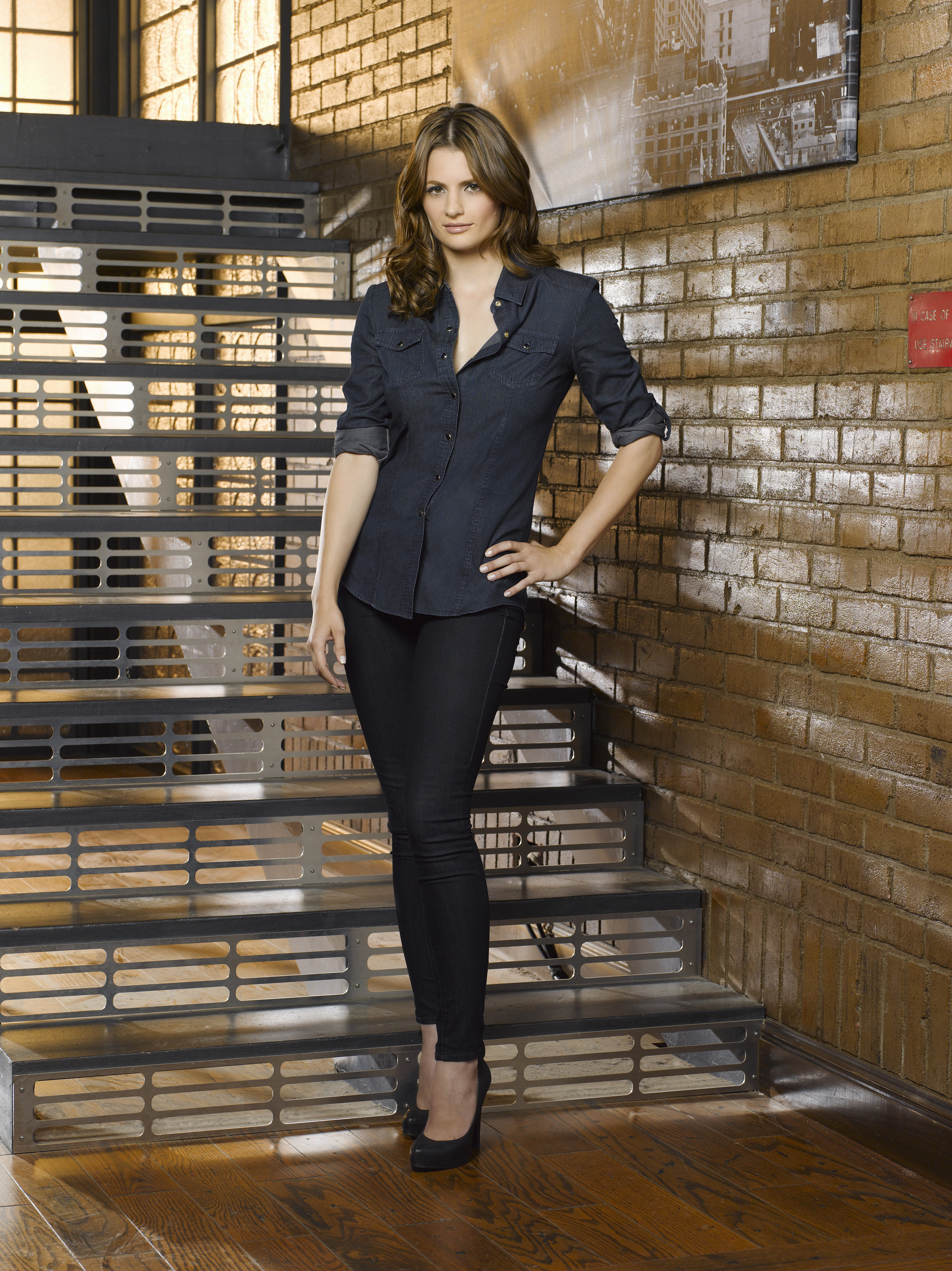Castle TV Series Stana Katic as Kate Beckett  DVDbash