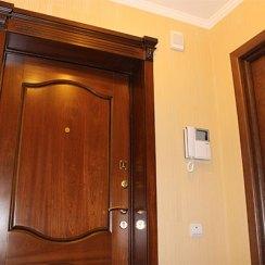 Дмитровские двери