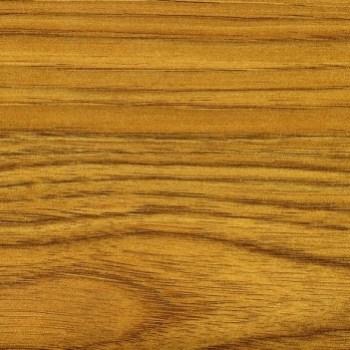 3207/Р Масличный орех