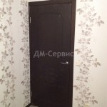 Глухая шпонированная дверь
