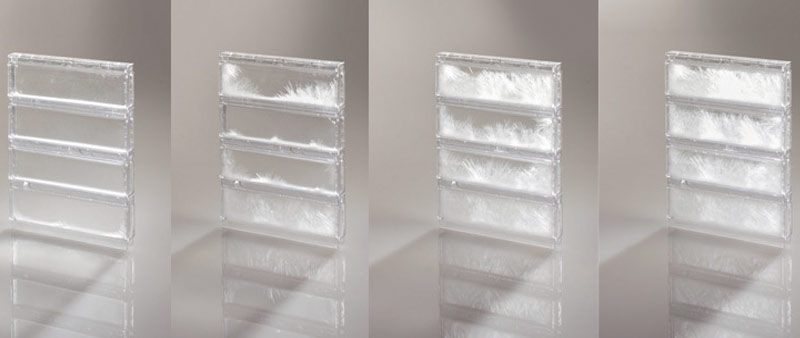 arquitectura_glassx04