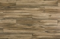 FREE Samples: Salerno Porcelain Tile