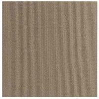 Homeworx Direct Peel And Stick Carpet Tiles 3612TN / 12 in ...
