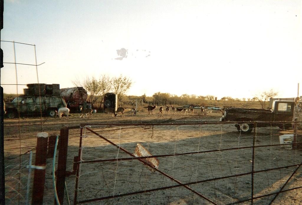 Ranch0015