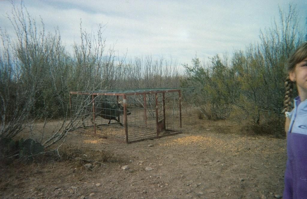 Ranch0024