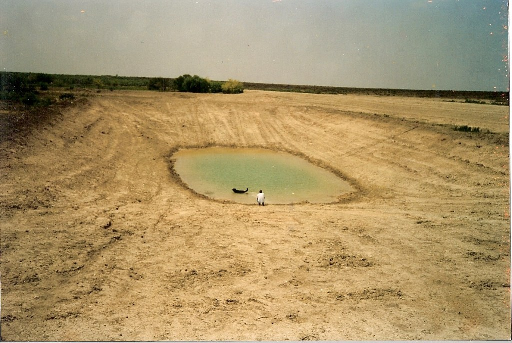 Water Ponds – 1