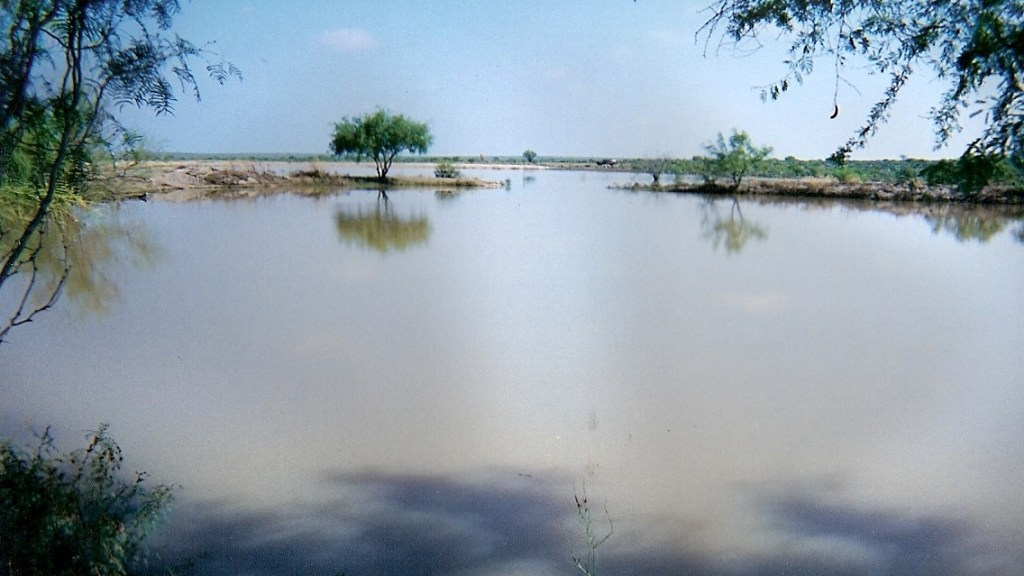 Water Ponds – 14
