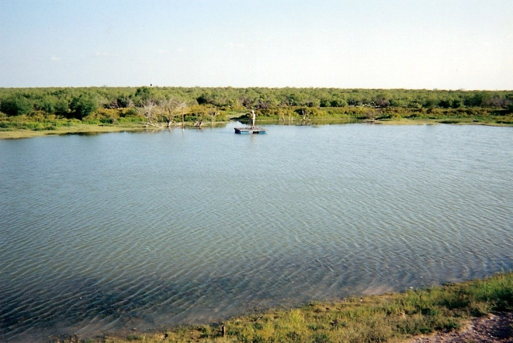 Water Ponds – 51