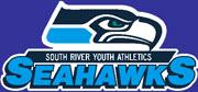 srya seahawks