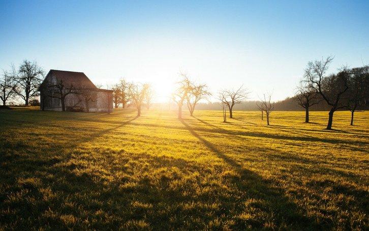 family vacation farm