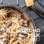 Dwardcooks almond milk alfredo pinterest