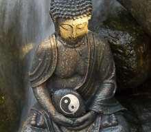 Yoga Sutra 38 You Reproduce Yourself