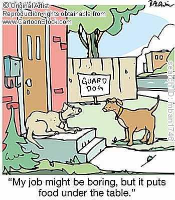 15. dog cartoon