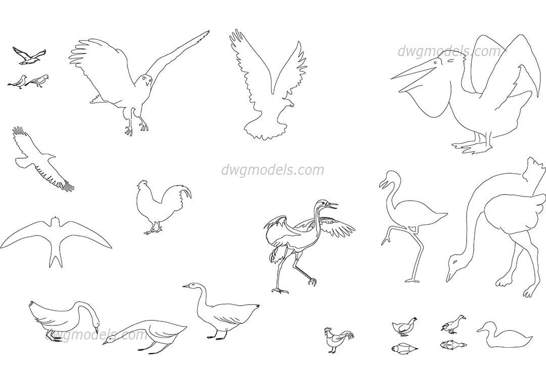 Birds DWG, free CAD Blocks download