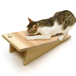 We Like Catswall Design Pet Project