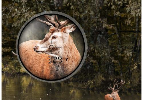TIDEWE Hunting Rangefinder Review