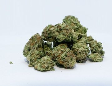 Marijuana posession can be a criminal charge