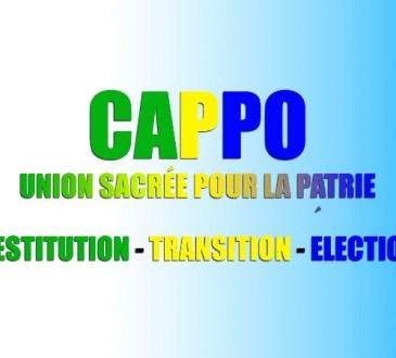 Gabon sous l'imposteur d'Ali Bongo / Diaspora : Dialogue national inclusif et souverain