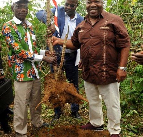 Ali Bongo lance la 1ère campagne de récolte du projet graine