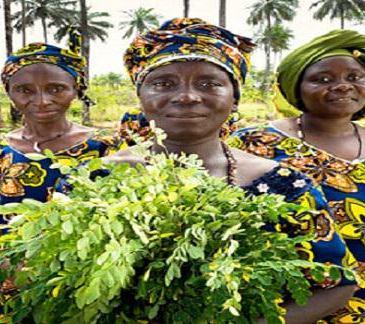 Journée internationale de la Femme : Femme et société ?
