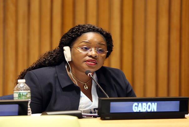 Gestion des forêts : La politique gabonaise défendue à l'ONU