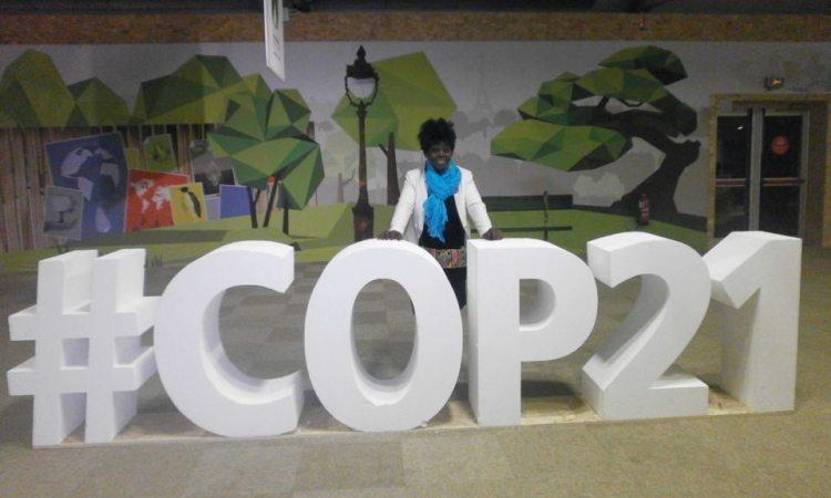 De la COP 21 à la COP 23, le désastre écologique gabonais...