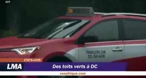 Des toits verts à DC